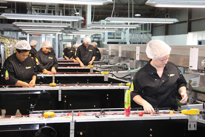 The Rockit apple packaging facility.