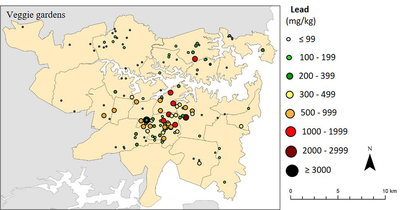 Soil lead concentrations in 141 vegetable gardens in Sydney, Australia (© Macquarie University, 2015)