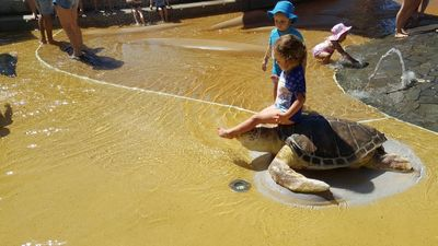 The turtle is a popular sit-upon item.