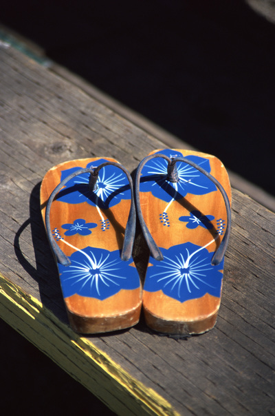 Try these on for size. [Image of a pair of flip flops.]