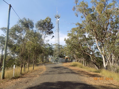 An antenna tower nestled amongst trees and bushland