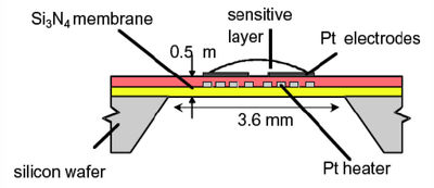Figure 1: Typical solid state sensor design.